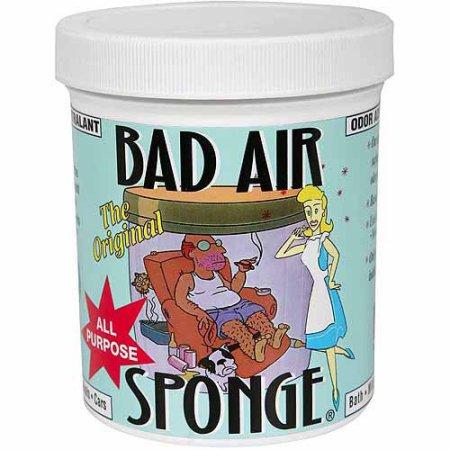 美國Bad Air Sponge 除甲醛 空氣淨化器清新劑 家用車用